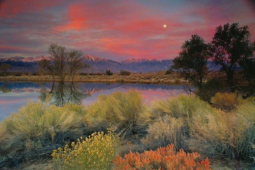 Cloudy-Autumn-Morning-in-the-owens-Valley-karya-Galen-Rowell